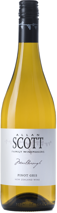 Marlborough. Allan Scott. Pinot Gris medium dry white